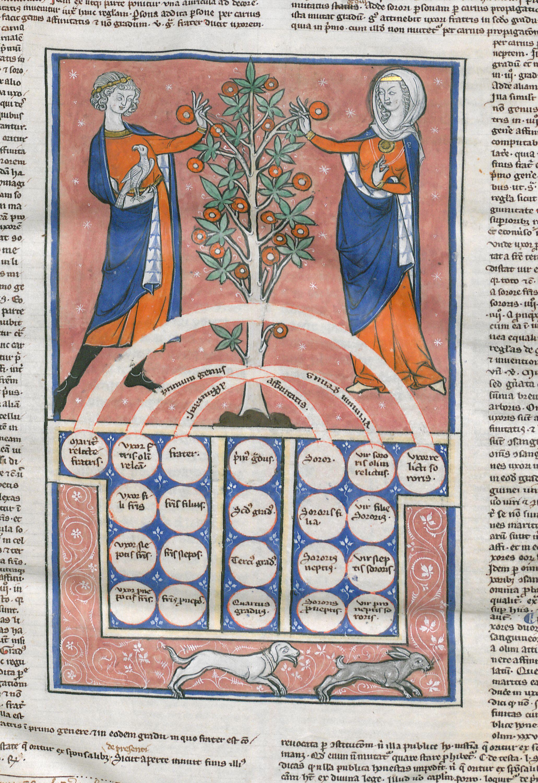 De boom van bloedverwantschap bibliotheek brugge